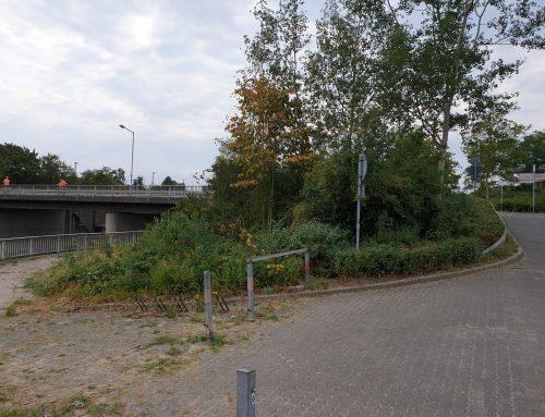 Für 120.000 €: eine neue Plattform an der Werre ??  – – –   Alte Aqua-Maciga-Plattformen weitgehend verfault und wieder abgerissen