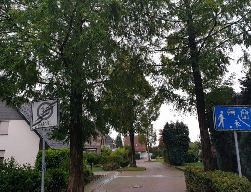 """Löhner Umweltpolitik ein Witz: """"KLIMANOTSTAND"""" ausgerufen – doch BAUM-ABHOLZUNGEN gehen weiter!"""